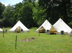 A group of tipis in a field for glamping.